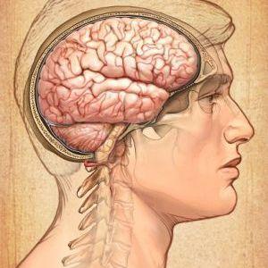 Психотерапія - індивідуальна терапія - псіхосоціологіческій терапія - розмовна терапія
