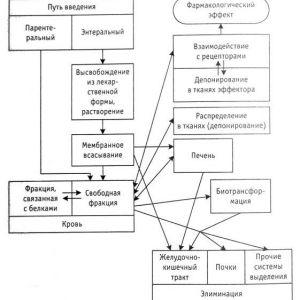 Фармакокінетичні показники - обов`язкові складові концепції оптимальної лікарської терапії