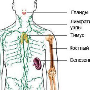 Імуноглобулін - внутрішньовенне введення