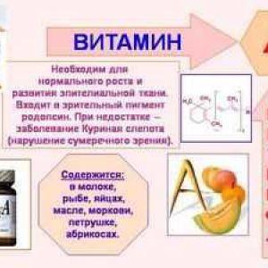 Корисні властивості вітаміну а