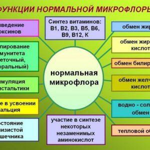 Роль мікрофлори кишечника на здоров`я людини